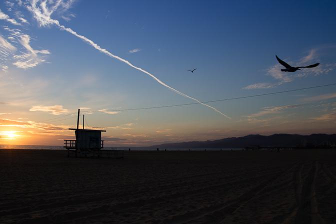 Santa Monica Sunset Lifeguard Stand and Bird